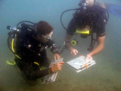 Learning Marine Research